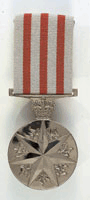 Photograph of Australia's Distinguished Service Medal