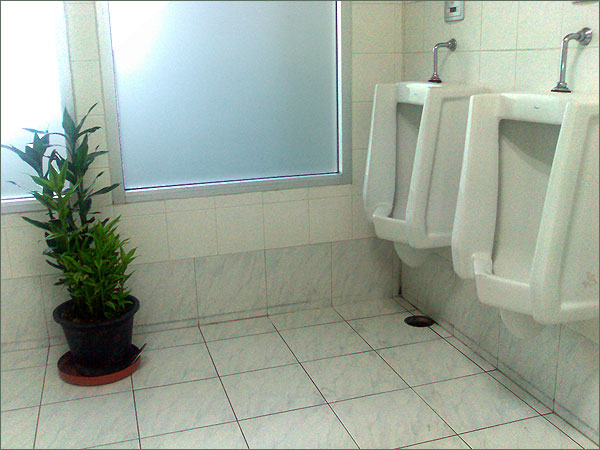 Photograph of the male toilet in Don Mueang district government offices, Bangkok