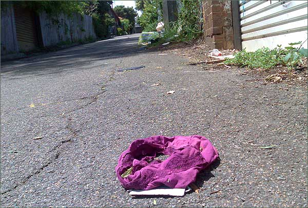 Photograph of purple knickers discarded in an Enmore laneway