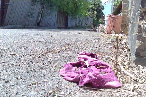Photograph of purple knickers after more time in the weather