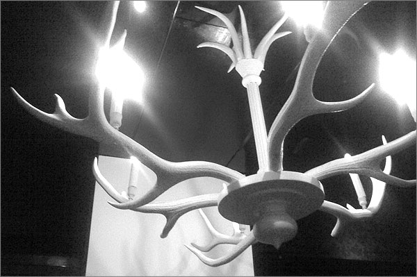 Photo of antler-shaped light fitting