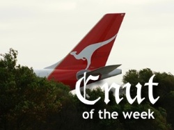 Photograph of jet airliner tail with Qantas logo and Cnut of the Week title