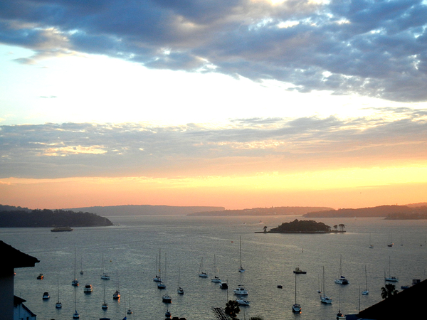 Sydney Harbour from Potts Point: click to embiggen