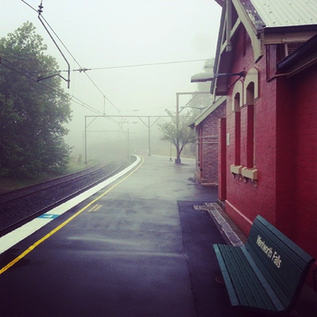 Wentworth Falls in the fog: click to embiggen