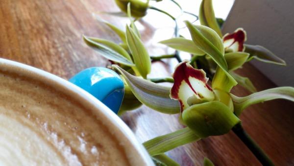 Floral Orbit: click to embiggen