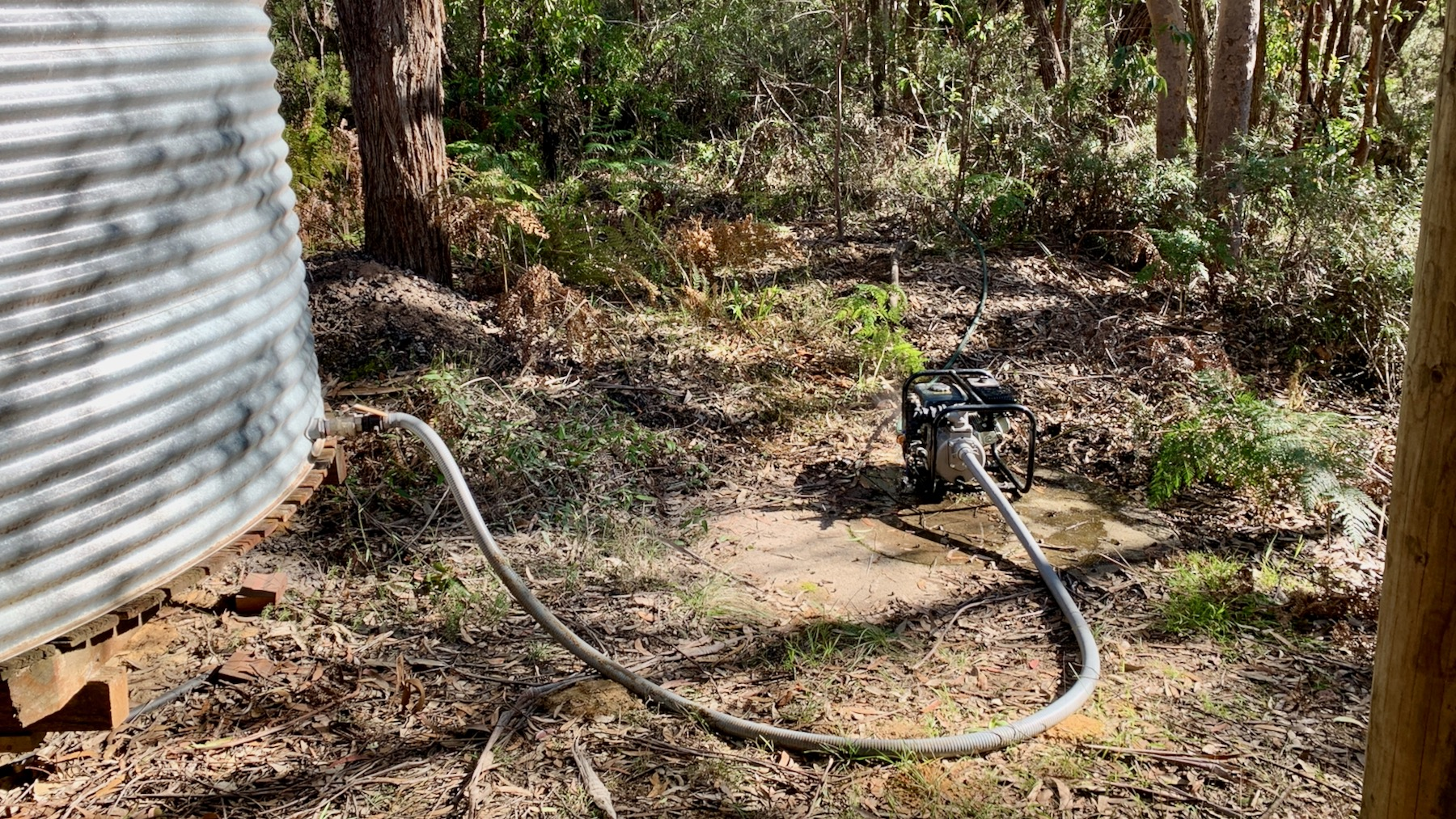 A petrol-driven transfer pump is being used to shift water from one rainwater tank to another through the scrub at Bunjaree Cottages, Wentworth Falls.
